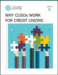 Why CUSOs Work For Credit Unions