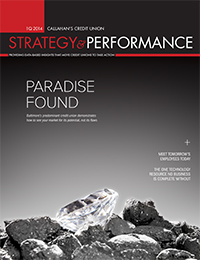 Strategy & Performance 1Q 2014 Cover