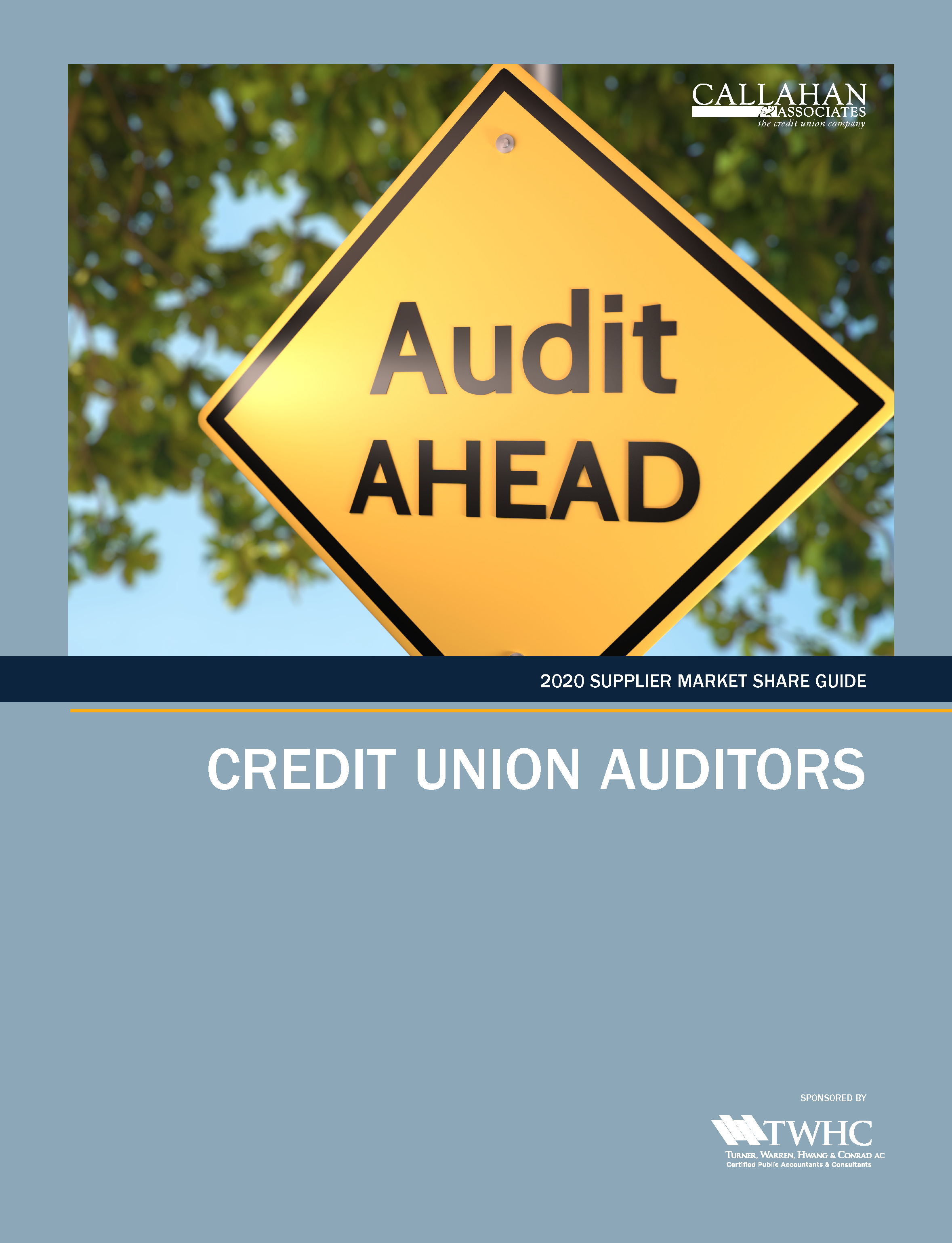 2020 Supplier Market Share Guide: Credit Union Auditors