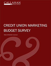 Credit Union Marketing Budget Survey