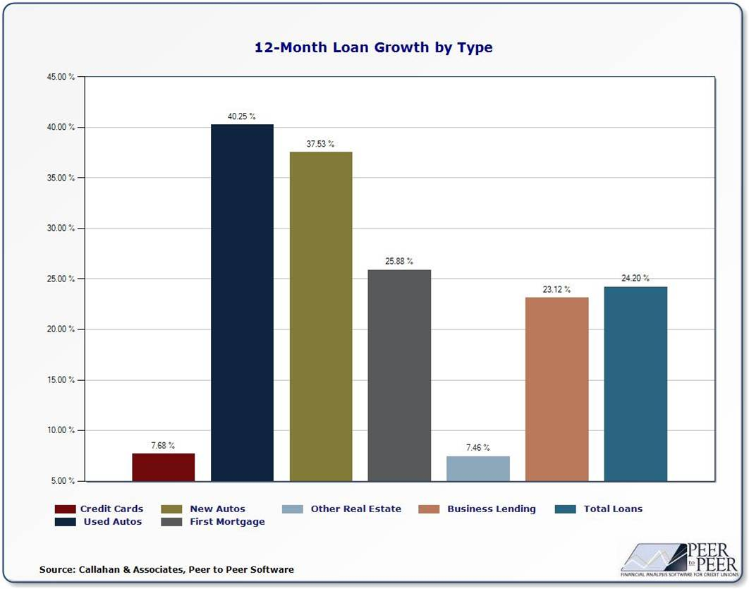 12-Month Loan Growth by Type